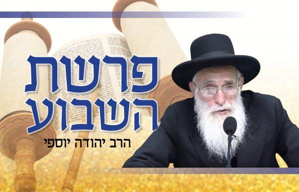 הרב יהודה יוספי – פרשת השבוע HD